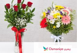 Osmaniye Çiçek